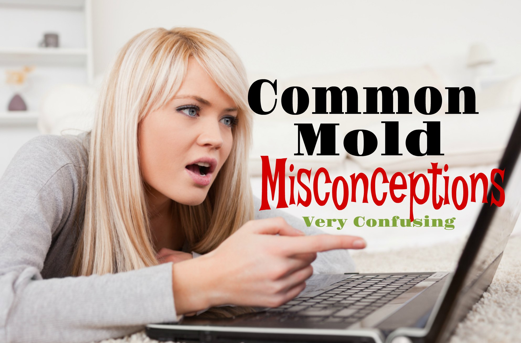 Common Mold Misconceptions | Black Mold | Is Mold Harmful | Indoor Mold | Mold in House