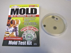 Home Mold Test Kit Black Professional Get Rid