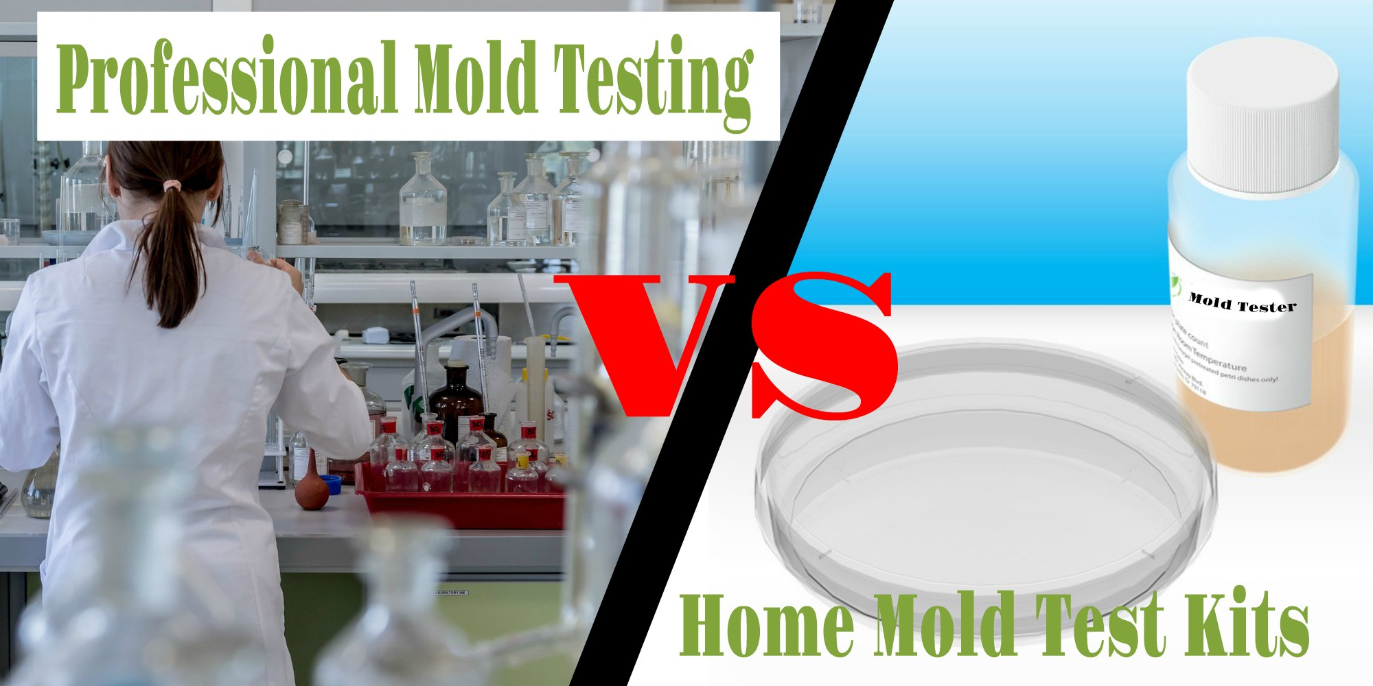 Does It Matter If You Use A Home Mold Test Kits Vs Professional Testing
