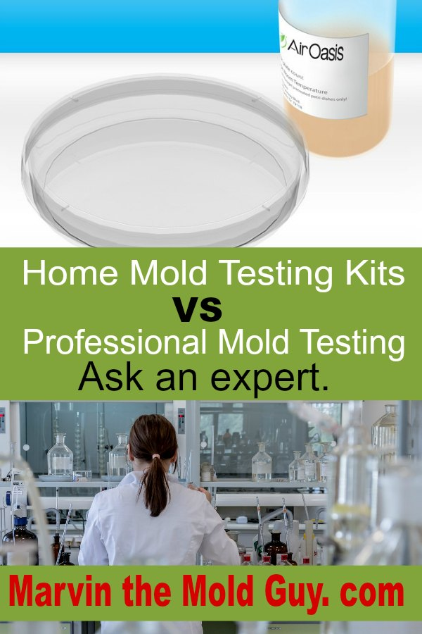 Mold Testing Black Home Kit Professional