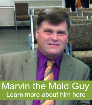 Learn about Marvin the Mold Guy.
